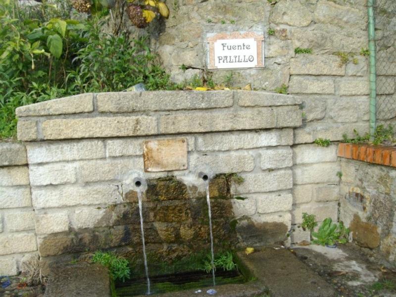 Fuente Palillo (Senderismo Los Vettones)