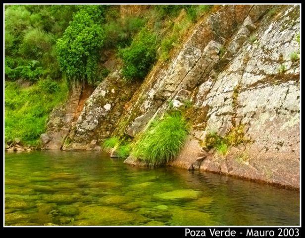Charca Verde (Mauro)
