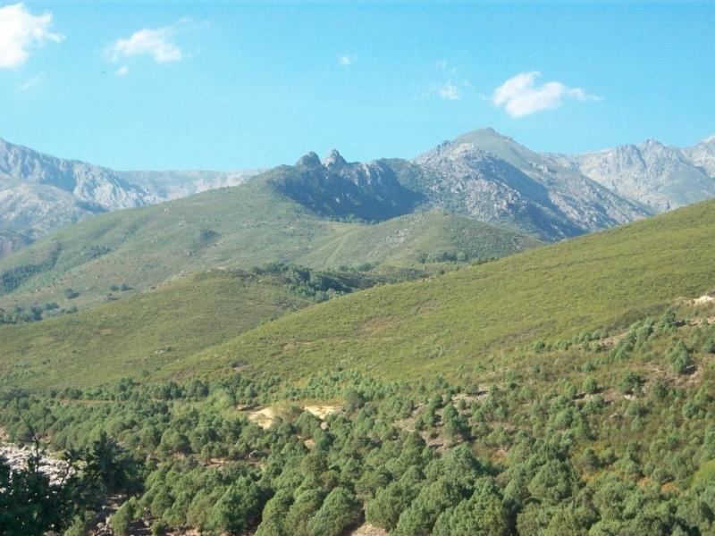 Sierra de Gredos (Jorge)