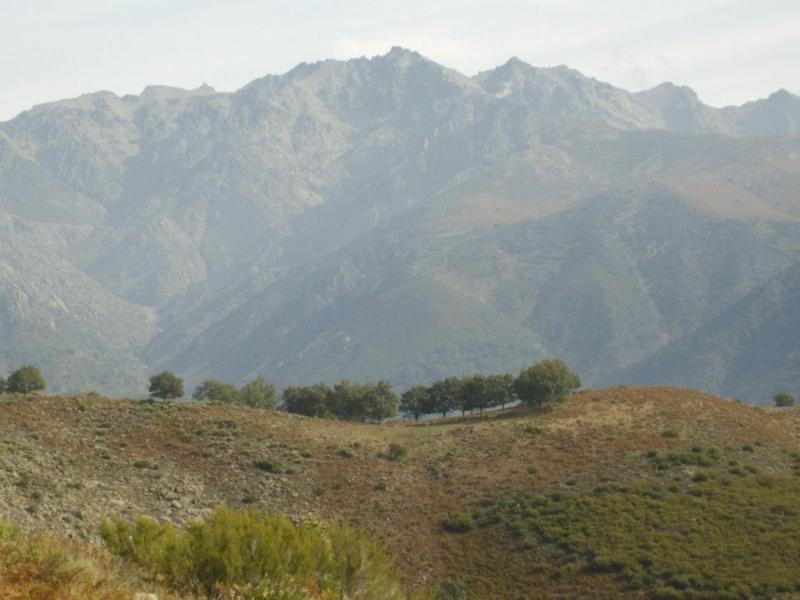 Sierra de Gredos (Senderismo Los Vettones)
