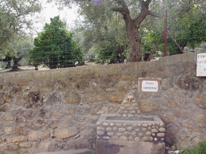 Fuente Conejeras (Marisol)