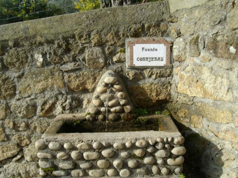 Fuente Conejeras (Senderismo Los Vettones)